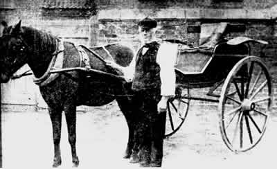old photo of Thomas Hatfield, pony and trap in Laxton, Yorkshire